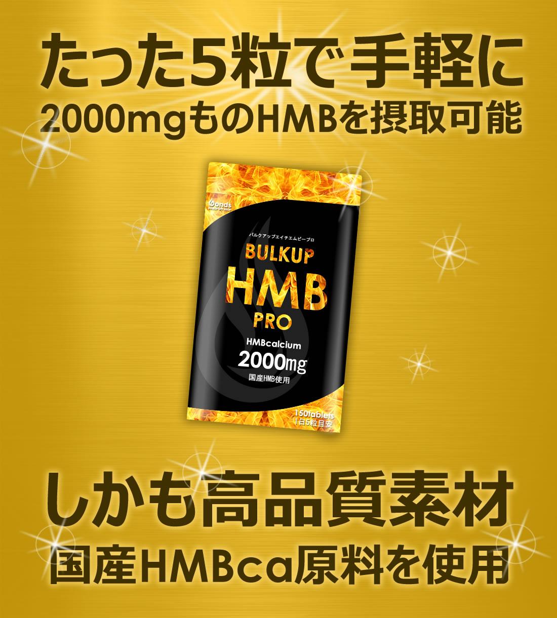 HMB以外の成分